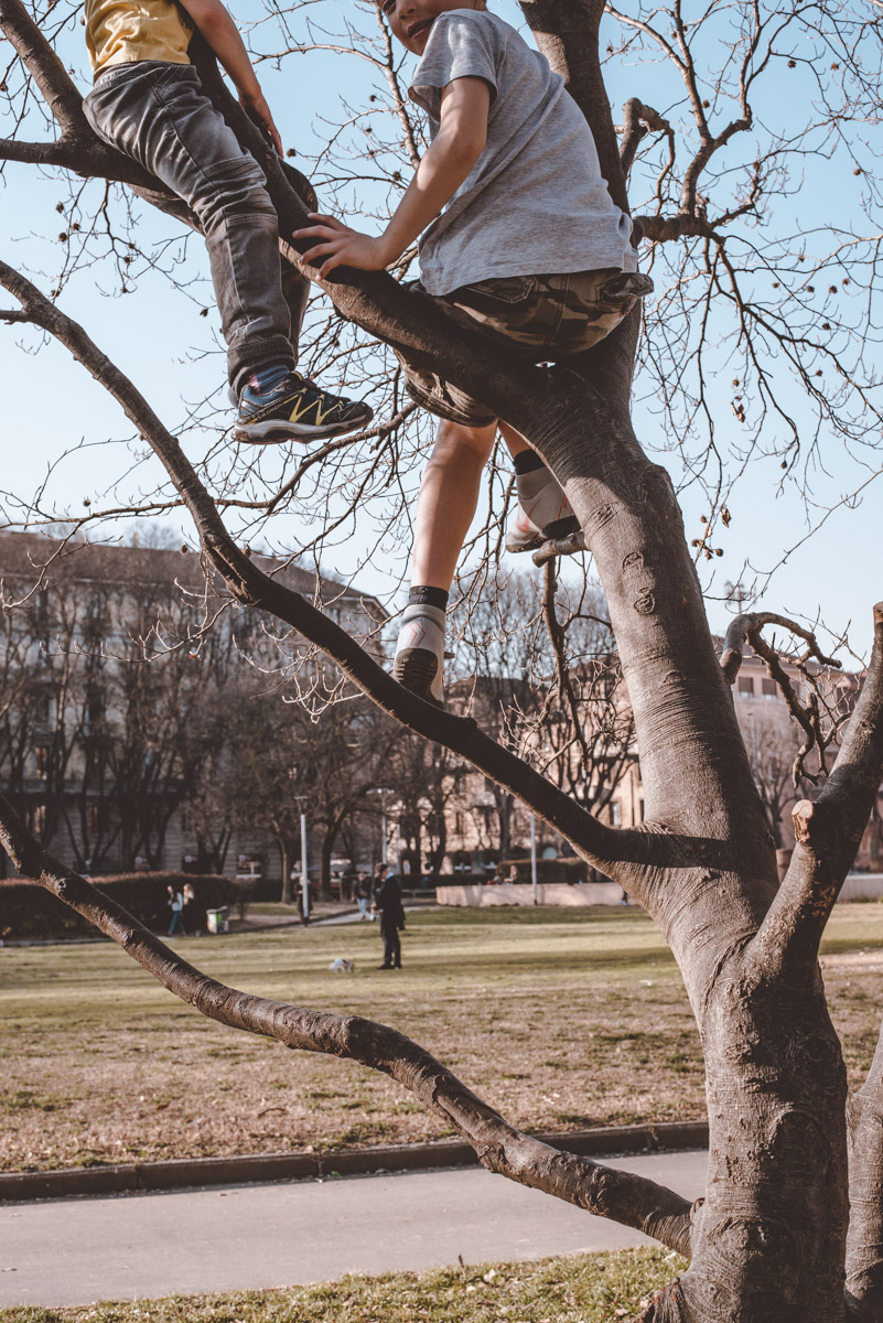 A street photograph showing two children climbing a tree in a park in the city of Milan
