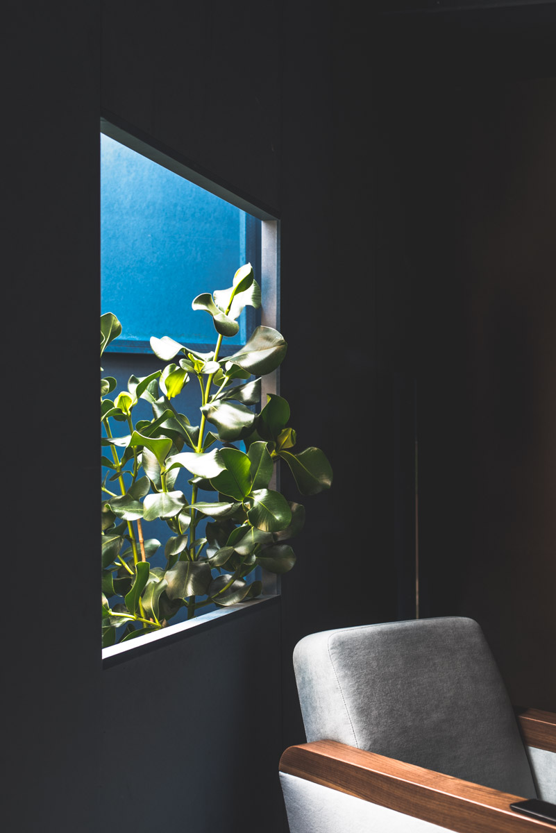 A plant showing up from a window and a chair during Fuorisalone Milan Design Week 2019