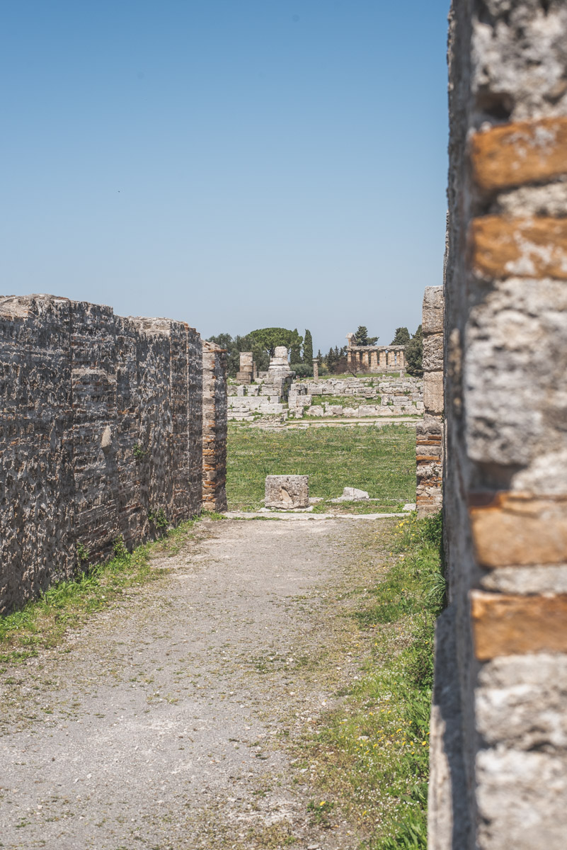 Walls of a house in the site of Paestum