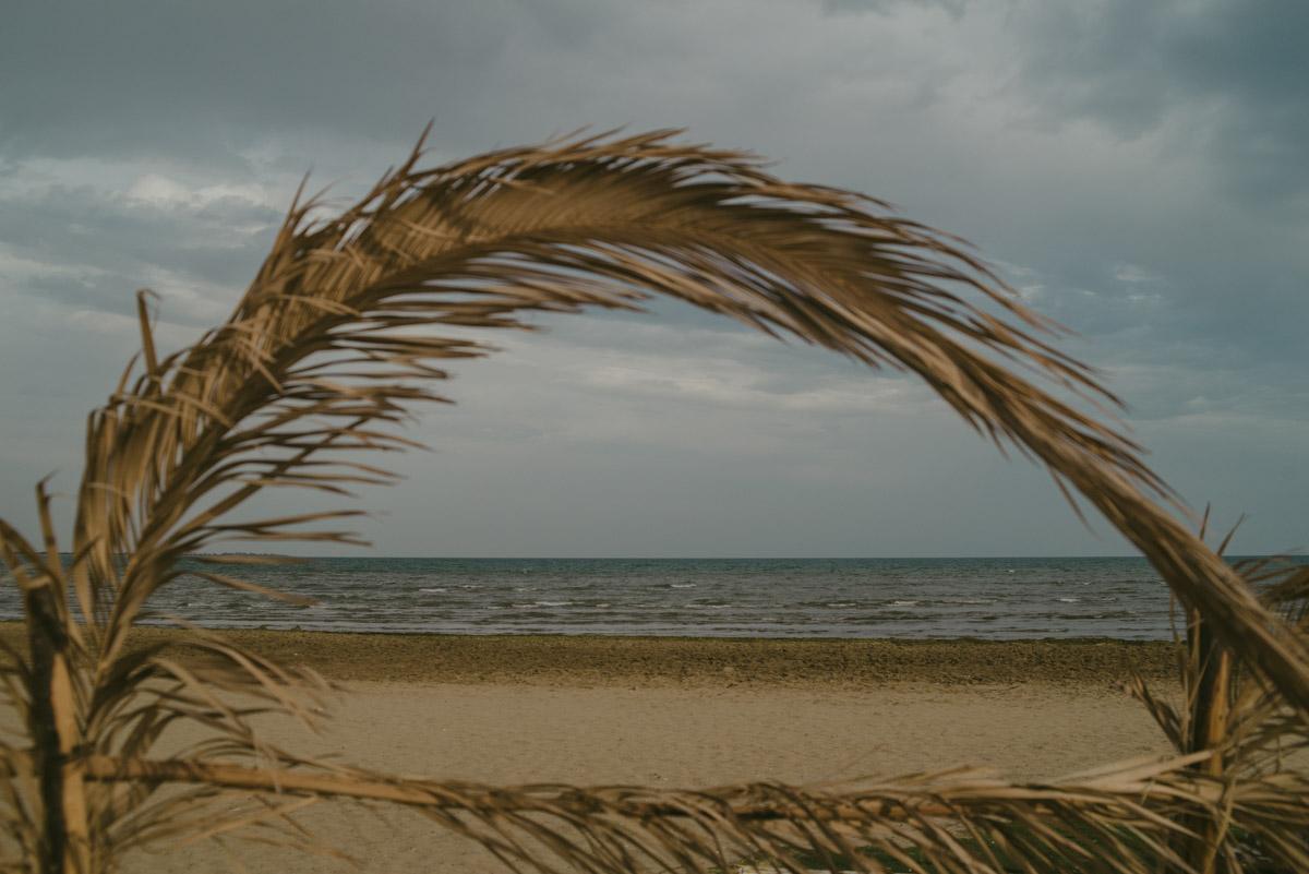 A solitary beach in Barletta on a grey and moody day with a plant in foreground - Una spiaggia deserta a Barletta con un ramo di palma in primo piano