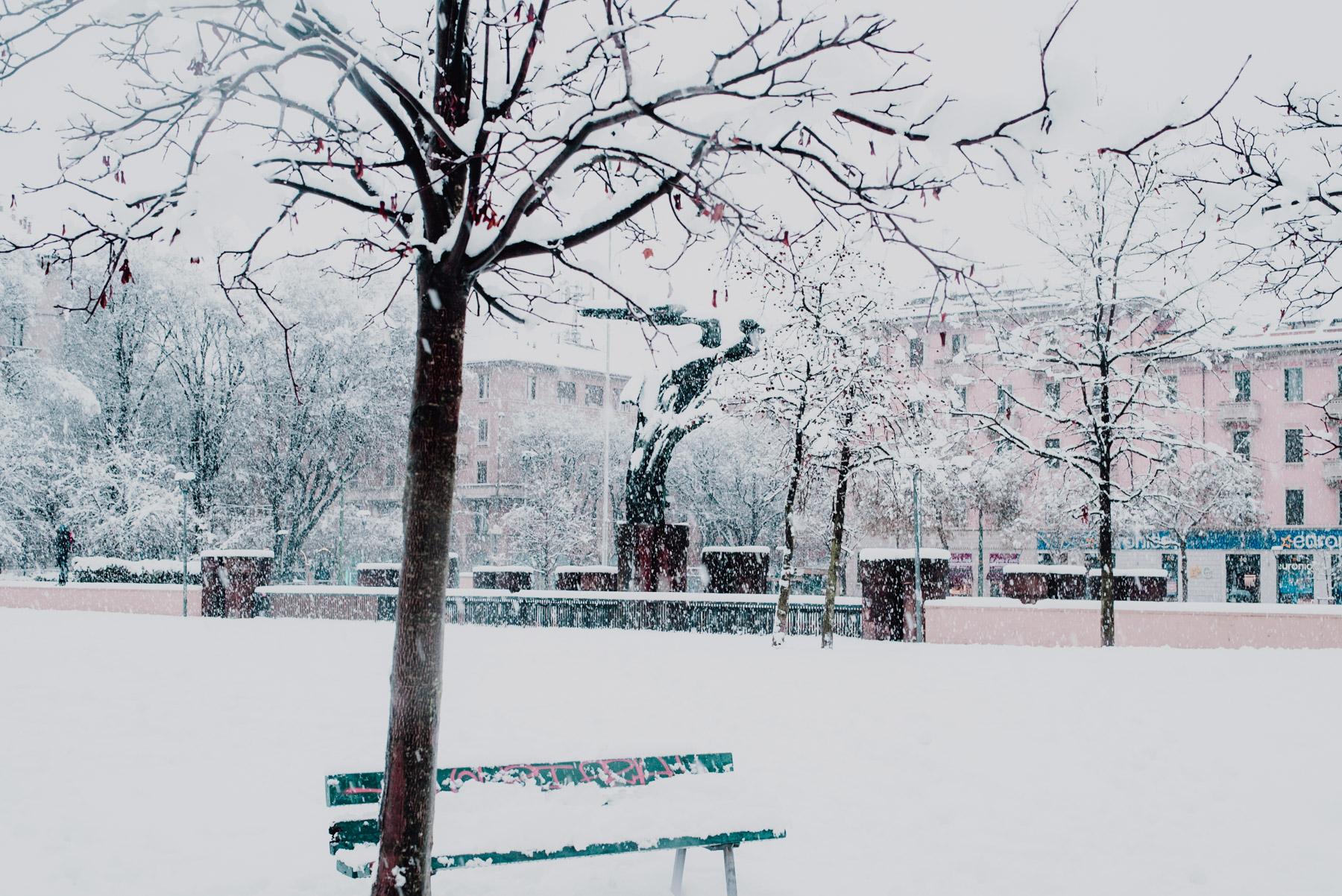 Snow in Milan on December 2020, a snowy landscape with a bench and a tree covered in snow, nevicata a Milano a dicembre 2020, paesaggio invernale con una panchina e un albero entrambi coperti dalla neve